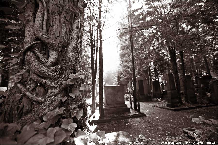 Juedischer_Friedhof